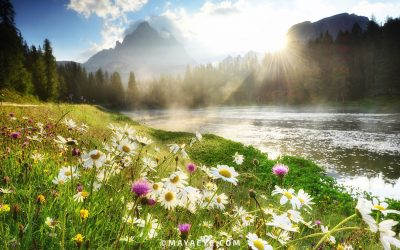 Crossing the River of Change. Why change from the inside-out is the only way to create a sustainable life of joy and happiness